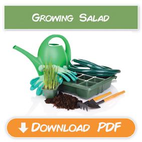 grow salad-12
