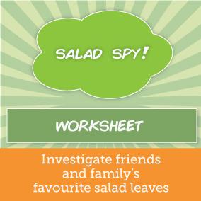 salad-spy